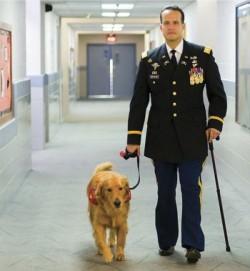«Пока есть Вторник» — одна из самых трогательных историй о человеке и собаке