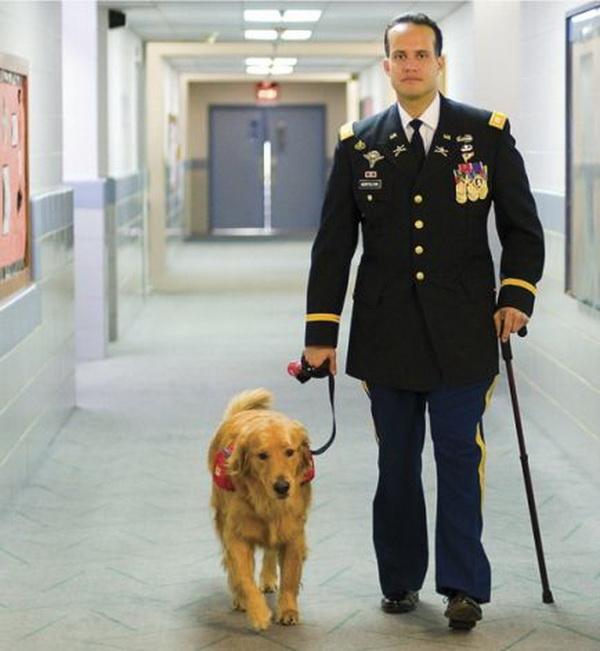 «Пока есть Вторник» - одна из самых трогательных историй о человеке и собаке
