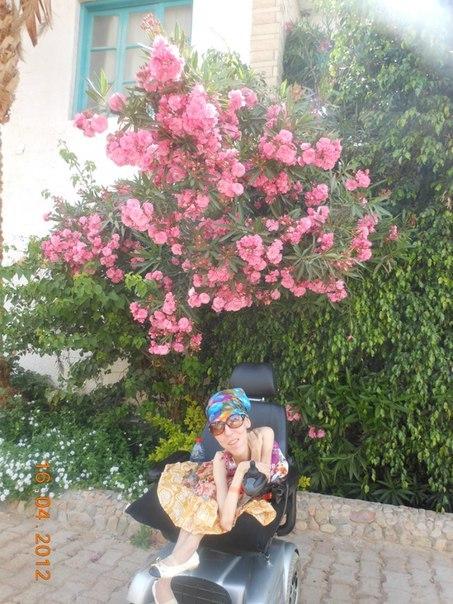 Это был самый прекрасный цветочный куст,такого запаха я нигде не встречала!