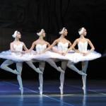 В Германии придумали, как перевести балет на язык жестов