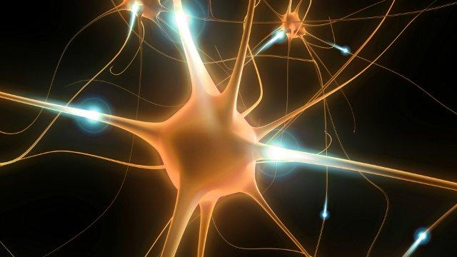 Врач о рассеянном склерозе: «Всё в ваших руках. И их нельзя опускать»