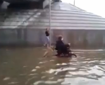 Собака помогла хозяину выбраться из потопа