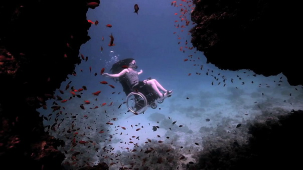 Сью Остин: Глубоководное погружение… в инвалидном кресле