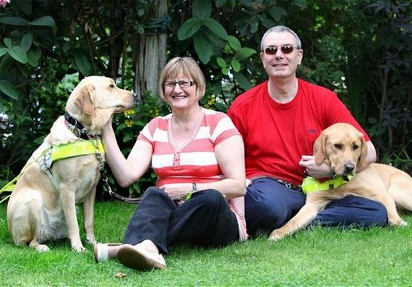 Влюбленные собаки-поводыри поженили хозяев