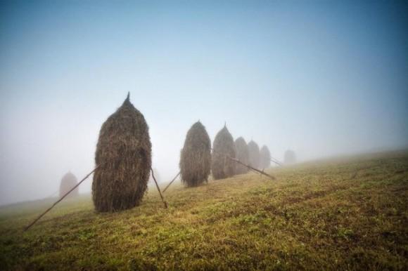 Про стожки и туман