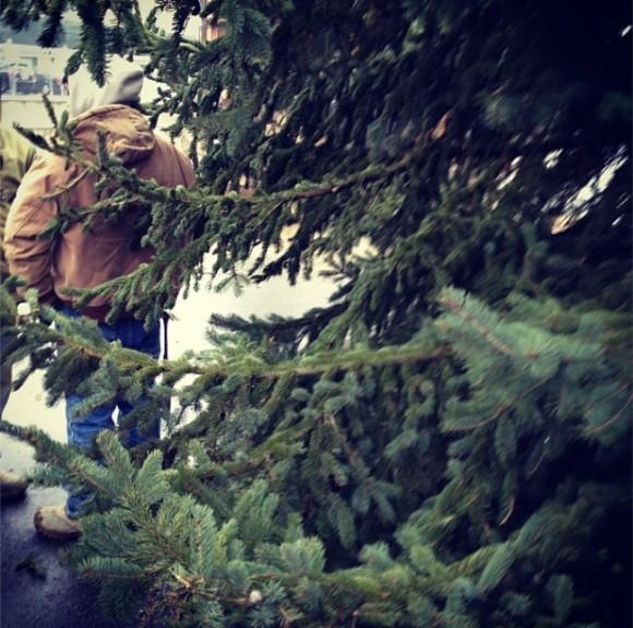 Устанавливали елку!