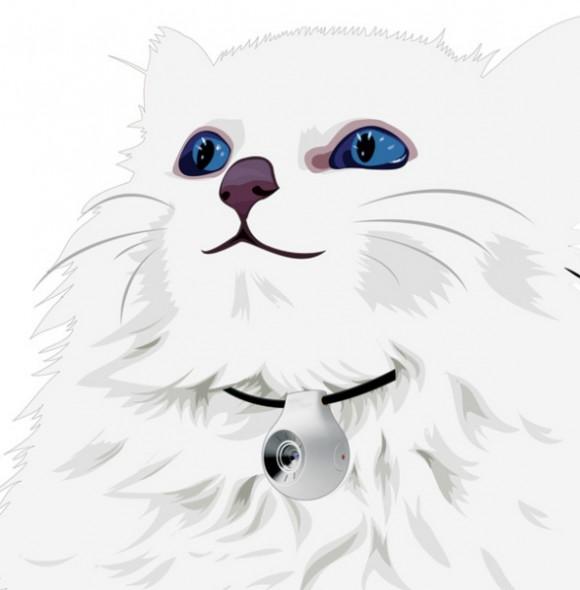 pet-vision-1