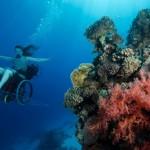 Под водой на … инвалидной коляске! (+Видео)