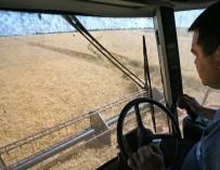 Анохин: запрет на профессиональные права низкорослым водителям понятен