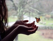 Люди-бабочки