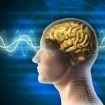 Препарат для сердца поможет при лечении «болезни Хокинга»