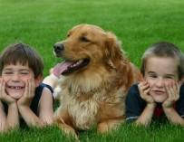 Американские ученые выяснили, что домашние животные помогают детям-аутистам находить друзей