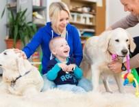 Особый ребенок и собаки. Репортаж из центра канис-терапии