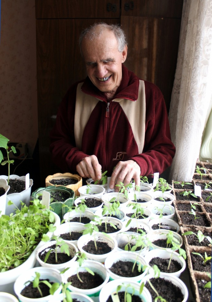 Незрячий садовод - огородник выращивает  рассаду к новому сезону