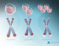 Биомаркеры теломеров позволят диагностировать рак за несколько лет до его появления