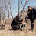 Два друга с инвалидностью посадили около 12 тысяч деревьев в Китае