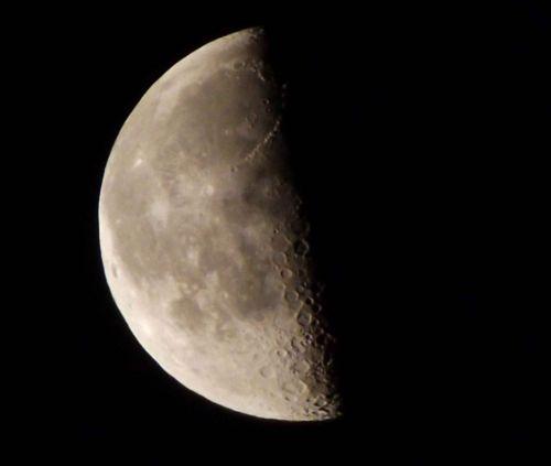 Луна в фазе последей четверти.Фото мое