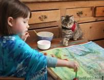 Задушевная дружба 5-летней девочки, страдающей аутизмом, и её терапевтической кошки