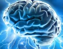 Миниатюрный головной мозг, созданный из клеток кожи пациента, помог в изучении аутизма