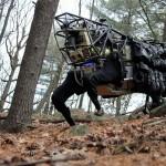 Роботы наступают: Обзор современных роботов, готовых служить человеку