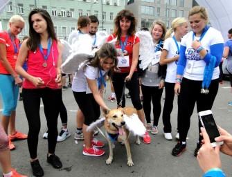 «Добрая Москва»: люди с крыльями и дамы с собачками