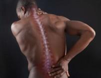 Ученые из Казани разработали метод восстановления спинного мозга после травм