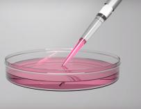 Ученые обещают лечить рак одним уколом