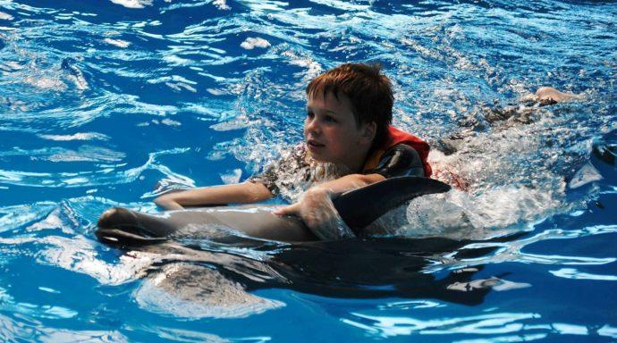 © Sputnik/ из архива И.Дергач Дельфинотерапия хорошо влияет на детей с аутизмом: Тимур в Минском дельфинарии.